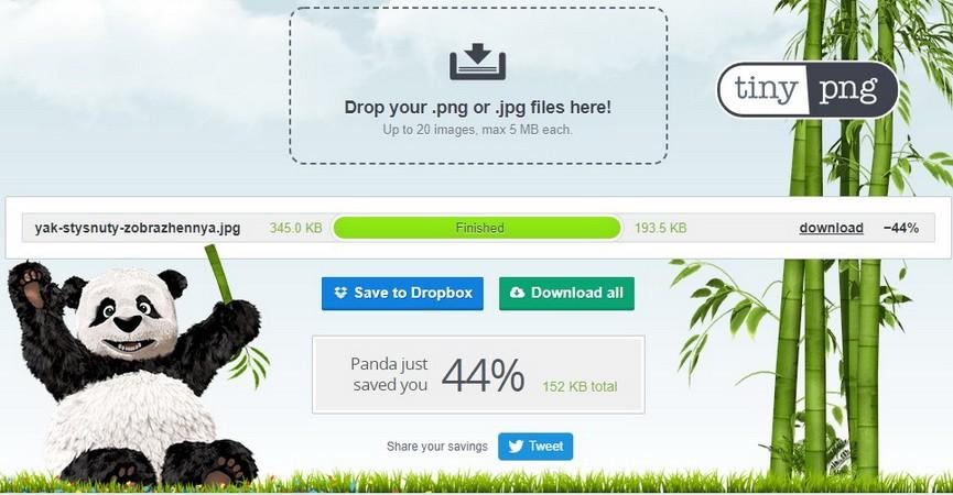 TinyPNG/TinyJPG: стиснутий формат JPEG